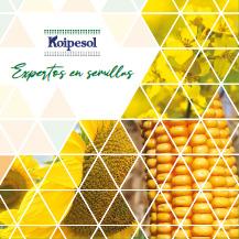 catalogo Koipesol 2020 Oleokelsa