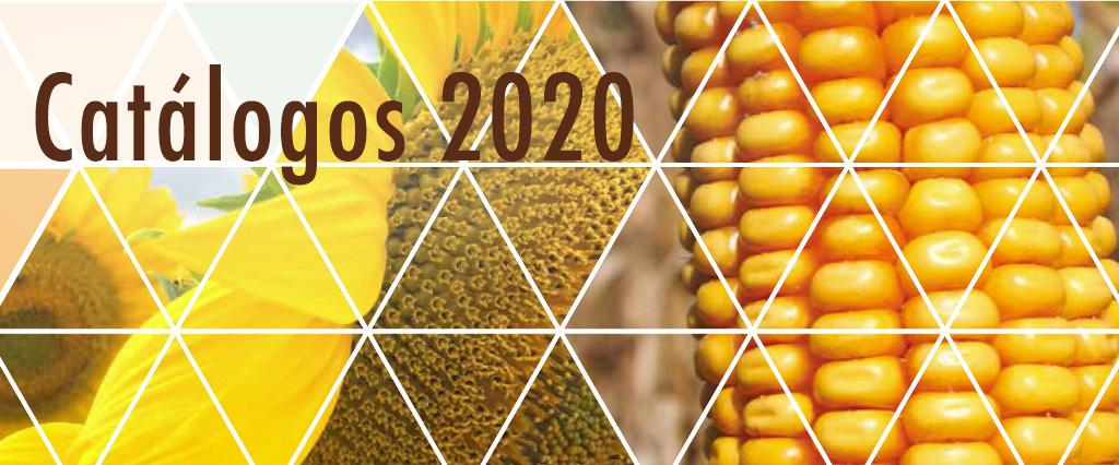 Los Catálogos 2020 Ya Están Aquí
